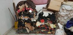 Ovine leather - Lot 45 (Auction 2618)