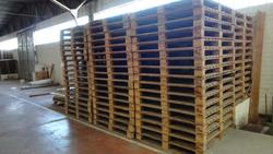 Binova Piero pallets - Lot 42 (Auction 2759)