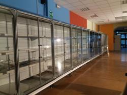 Arneg Glass Door Beverage Refrigerator - Lot 2 (Auction 2766)