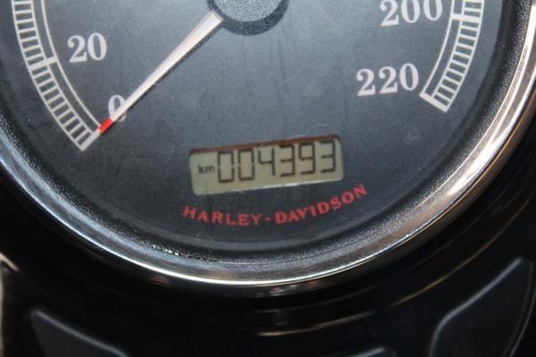 Immagine n. 11 - 1#3143 Harley Davidson