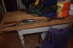 Benelli semi automatic rifle - Lote 18 (Subasta 3151)
