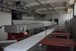 Processing table with conveyor - Lot 19 (Auction 3256)