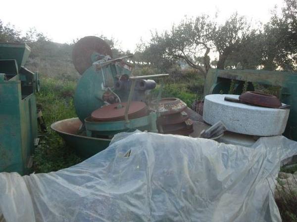 Immagine n. 2 - 1#3272 Impianto molitura olive Nicola Biallo Eredi