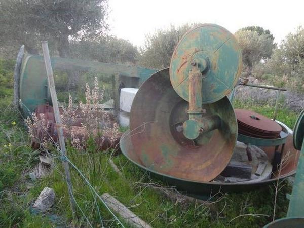 Immagine n. 6 - 1#3272 Impianto molitura olive Nicola Biallo Eredi