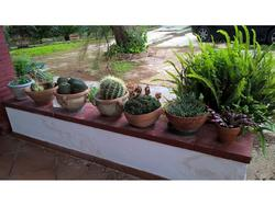 Indoor and outdoor furniture - Lote 2 (Subasta 3375)