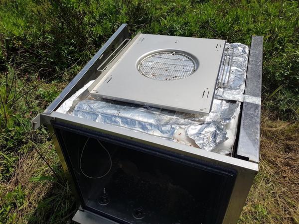 Immagine n. 11 - 6#3428 Cappa Zanussi e teglie da forno