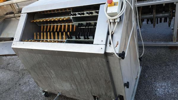 Immagine n. 8 - 25#3529 Spennatrice polli artigianale