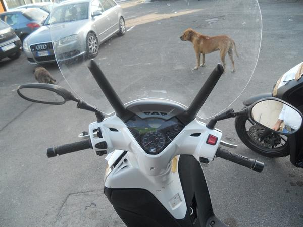 Immagine n. 6 - 2#3642 Motociclo Honda SH 300