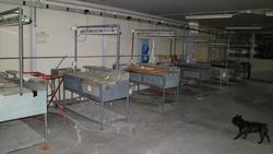 Benches for labeling - Lot 10 (Auction 3655)