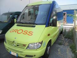 Mercedes Ferqui bus - Lot 7 (Auction 3702)