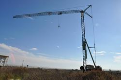 Benedini crane - Lote 12 (Subasta 3834)