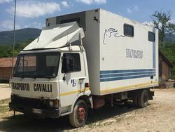 Fiat van per trasporto animali vivi - Lotto 1 (Asta 3848)