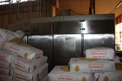 Tecnodom industrial refrigerators - Lote 32 (Subasta 3961)