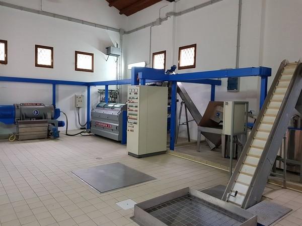 Immagine n. 2 - 2#4335 Impianto frantoio oleario Comagri