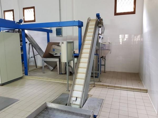 Immagine n. 3 - 2#4335 Impianto frantoio oleario Comagri