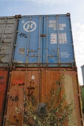 Container - Lotto 205 (Asta 4390)