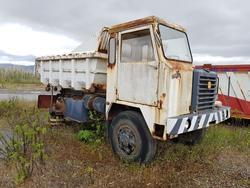 Camion da miniera Astra e autocarro Perlini - Lotto 54 (Asta 4479)