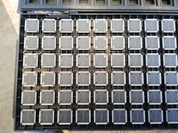 8 bit  molex and various microcontrollers - Lot 42 (Auction 4533)