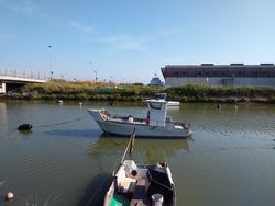 Artisan Pilot Boat - Lote 1 (Subasta 4543)