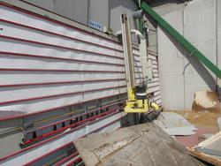 Putsch Meniconi vertical panel saw - Lot 11 (Auction 4553)
