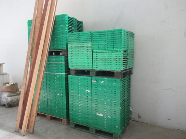 3#4560 Alveoli in pvc e cassette legno per frutta