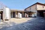 Immagine 4 - Ramo di azienda dedita a coltivazione di vigneti e produzione di vini in Chianti - Lotto 1 (Asta 4598)