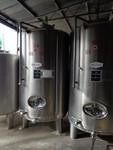 Immagine 35 - Ramo di azienda dedita a coltivazione di vigneti e produzione di vini in Chianti - Lotto 1 (Asta 4598)