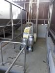 Immagine 47 - Ramo di azienda dedita a coltivazione di vigneti e produzione di vini in Chianti - Lotto 1 (Asta 4598)