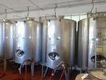 Immagine 16 - Ramo di azienda dedita alla produzione e commercio di vini e prodotti liquorosi - Lotto 1 (Asta 45980)