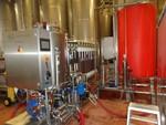 Immagine 63 - Ramo di azienda dedita alla produzione e commercio di vini e prodotti liquorosi - Lotto 1 (Asta 45980)