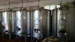 Immagine 154 - Ramo di azienda dedita alla produzione e commercio di vini e prodotti liquorosi - Lotto 1 (Asta 45980)