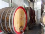 Immagine 354 - Ramo di azienda dedita alla produzione e commercio di vini e prodotti liquorosi - Lotto 1 (Asta 45980)