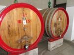 Immagine 355 - Ramo di azienda dedita alla produzione e commercio di vini e prodotti liquorosi - Lotto 1 (Asta 45980)