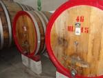 Immagine 364 - Ramo di azienda dedita alla produzione e commercio di vini e prodotti liquorosi - Lotto 1 (Asta 45980)