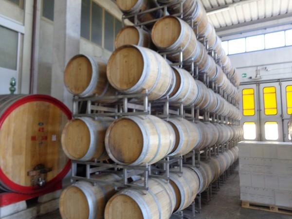 1#4599 Vino sfuso e imbottigliato del Chianti