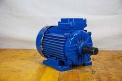 Motore elettrico - Lotto 18 (Asta 5027)