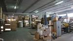 Immagine 30 - Cessione di azienda produttrice di mobili da giardino - Lotto 1 (Asta 5052)