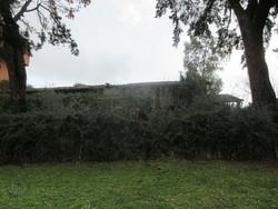 Potazu fast erecting crane - Lot 3 (Auction 5227)