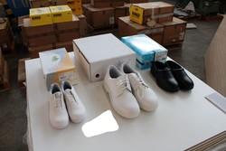 Sanitary footwear Safe Way - Lot 88 (Auction 5240)
