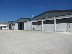 Sale of a business complex of production and trade of sanitary products - Lot 0 (Auction 5375)