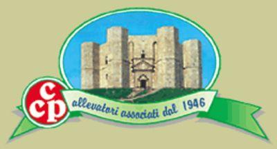 Marchio Cooperativa Caseificio Pugliese - Lotto 200 (Asta 538)
