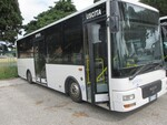 Autobus Man - Lotto 7 (Asta 5473)