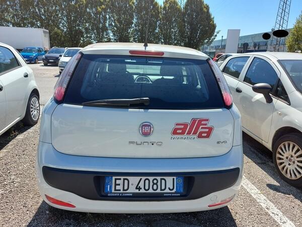 Immagine n. 5 - 10#5479 Autocarro Fiat Punto Evo