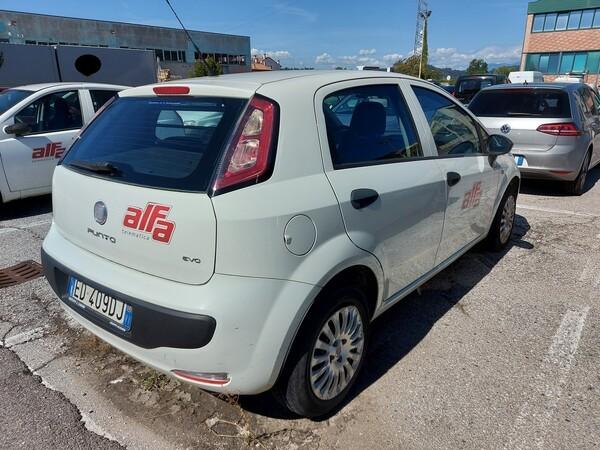 Immagine n. 5 - 11#5479 Autocarro Fiat Punto Evo