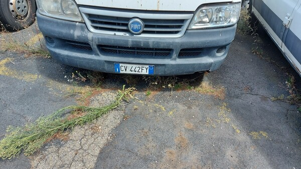 31#5491 Furgone Fiat Ducato in vendita - foto 7