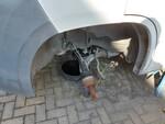 Immagine 4 - Fiat Ducato - Lotto 3 (Asta 5494)