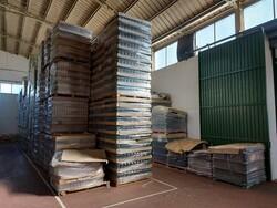 Stock di bottiglie e attrezzature per confezionamento olio - Asta 5548