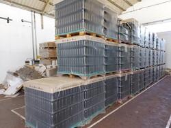 Stock di bottiglie per olio - Lotto 6 (Asta 5548)