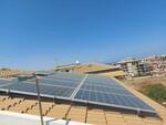 Pannelli solari Yingli Solar - Lotto 4 (Asta 5558)