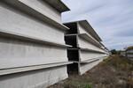 Immagine 81 - Manufatti cementizi per la realizzazione di capannoni - Lotto 1 (Asta 5624)